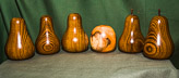 Five pears in Laburnum plus Apple in Yew.